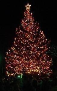 Christmas_tree_lighting